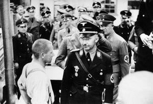 Tell Me How Himmler Misapplied Citizenism